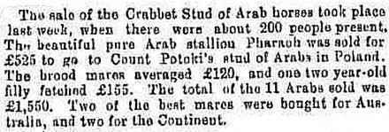 Crabbet Stud horse sale of 1882