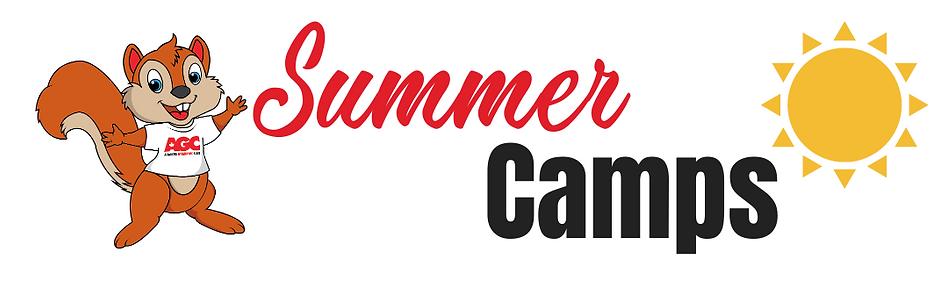 Summer Camps Altadore Gymnastic Club (3)