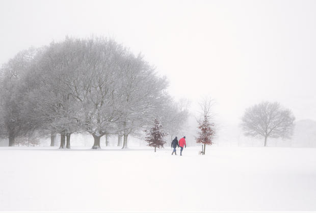 A Winter Walk in Rothamsted Park