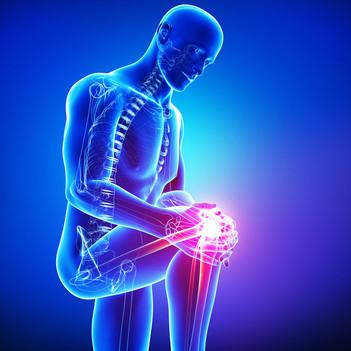 Spruce Grove Knee Pain