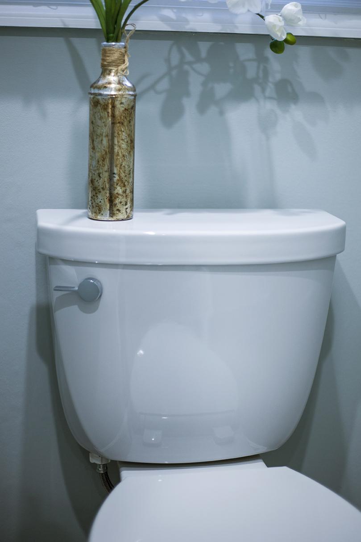 ToiletCloseForWeb