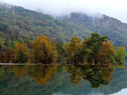 P1200685 tree reflection at dam.jpg
