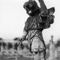 Rock Fist Angel