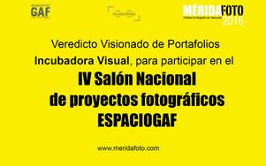 Veredicto Visionado de Portafolios Incubadora Visual, para participar en el IV Salón Nacional de pro