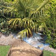 Juni 2020 - Kunders palmer Horsens