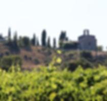 L'eglisette dans les vignes