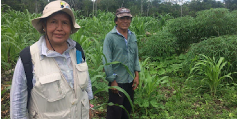 Victoria Santos habla sobre los acahuales y la simplificación de la normatividad