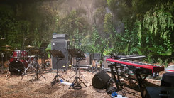Jungle Voice Auditions >