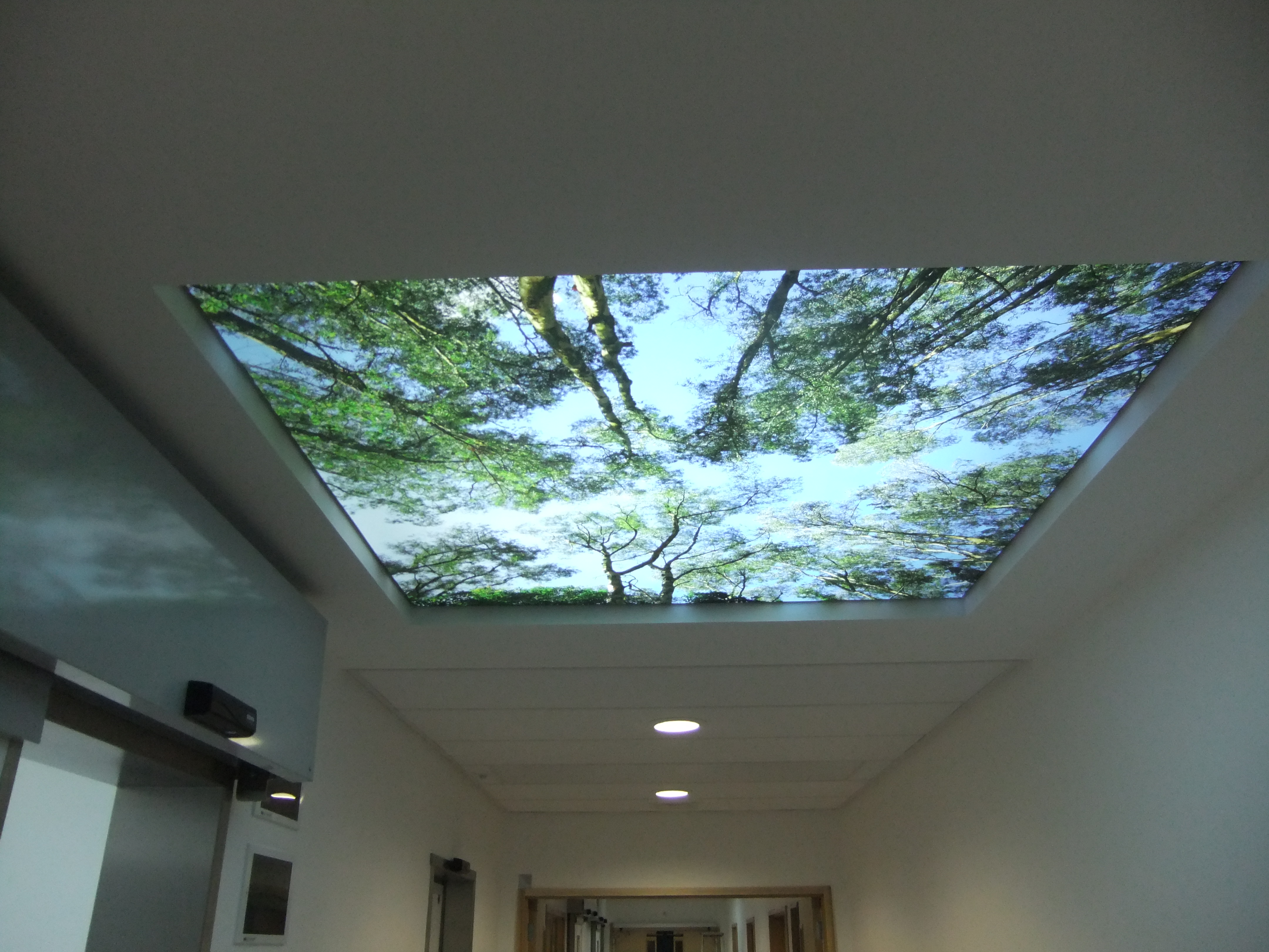 Milligan Reside Larkin Architects-MRL-Da