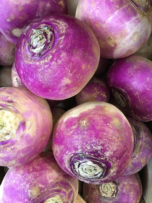 Turnips x 1