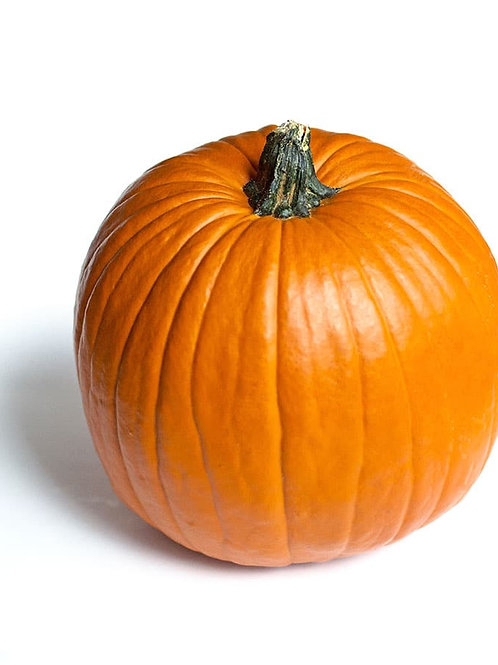 Pumpkin - Medium sized