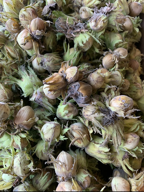 Cob Nuts 250g