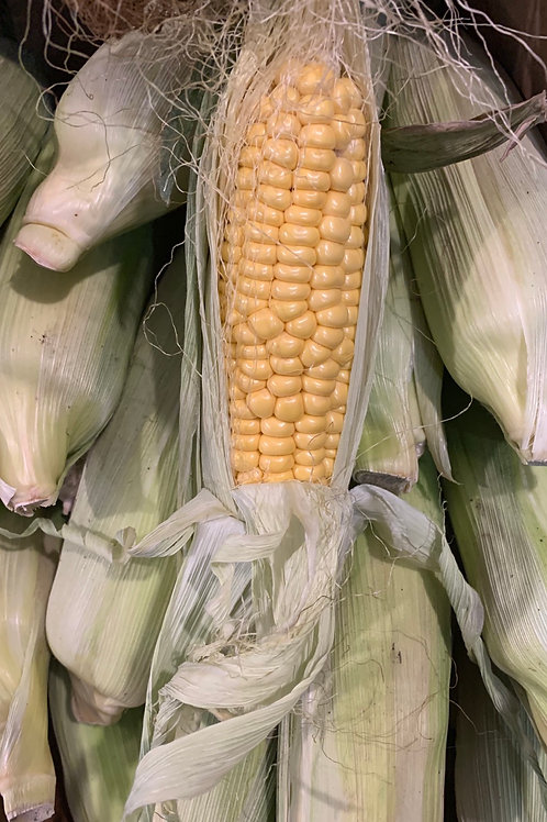Corn on the Cob per ear