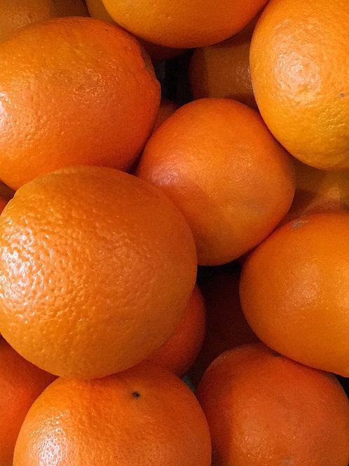Orange - Large