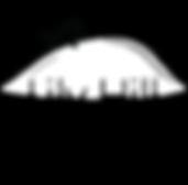 apt logo.png