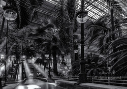 Luz de mañana en Atocha
