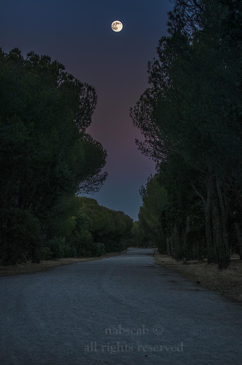 Camino de la Casa de campo
