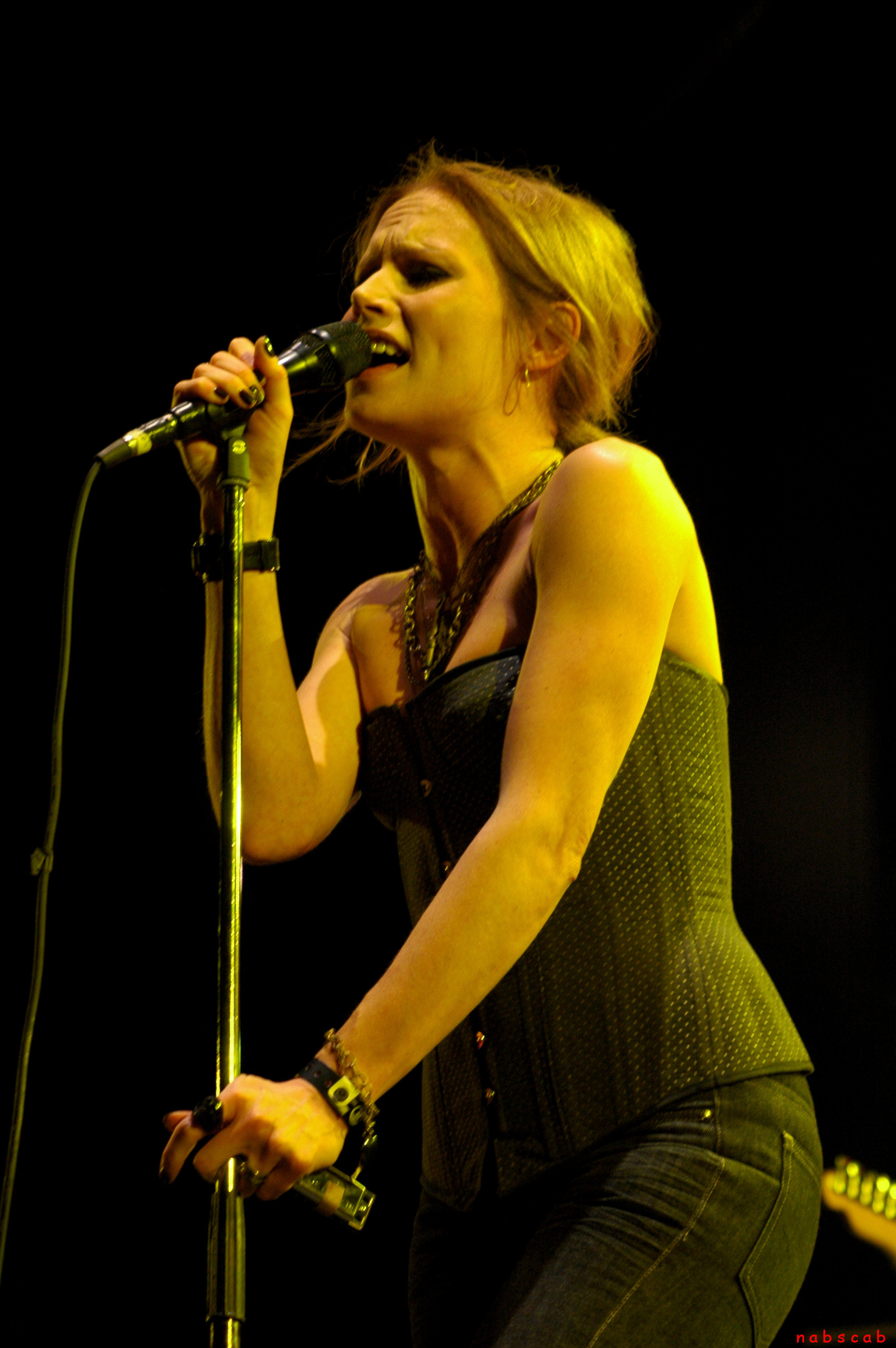 The Cardigans 2007
