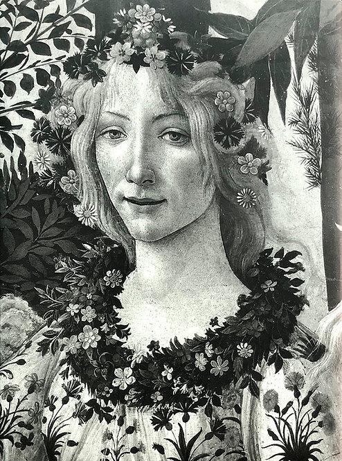 Botticelli - Lionello Venturi, Alessandro Cecchi