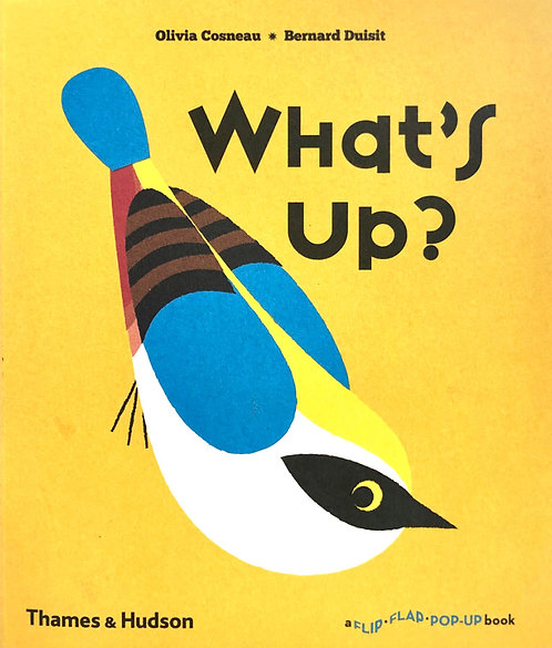 What's Up ? | Olivia Cosneau, Bernard Duisit