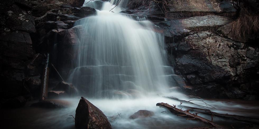 Maxwell Falls Wellness Experience
