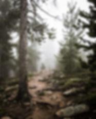 Colorado Maxwell Falls Mist-1.jpg