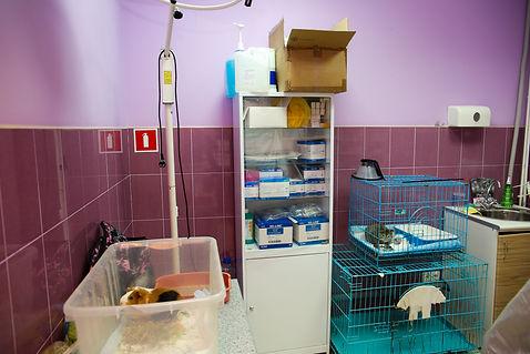 Процедурный кабинет лаборатории