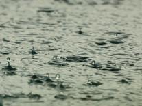 Nutricionismo e o fim do bolinho de chuva