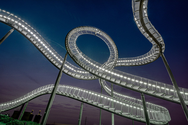 Tiger & Turtle 1