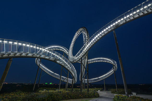 Tiger & Turtle 2