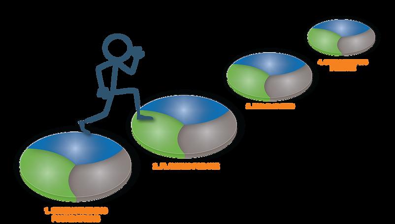 Visual Insights training journey.