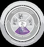 Evaluation Disc showing Digital Methods