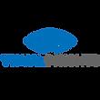 Visual Insights Logo