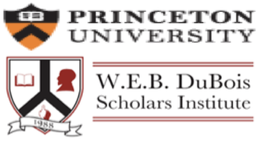 WEB DuBois Scholars Institute