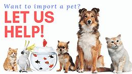 Importation of Pet Animals & non-pet animals