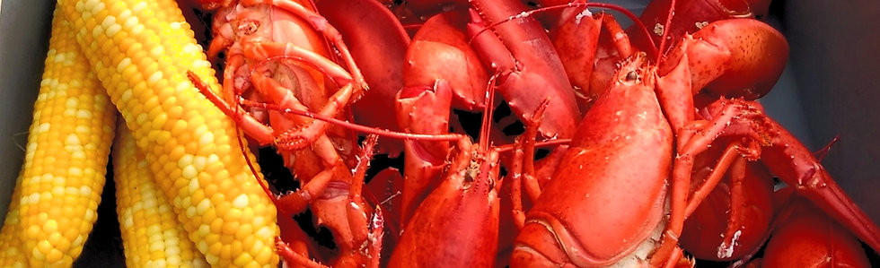 **Live Maine Lobster** 1.0 - 1.25 lbs. each (Ligonier Country Market Pick-up)