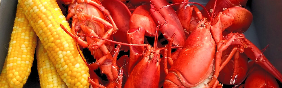 **Live Maine Lobster**     1.0 - 1.25 lbs. each (Cambria County Pick-up)