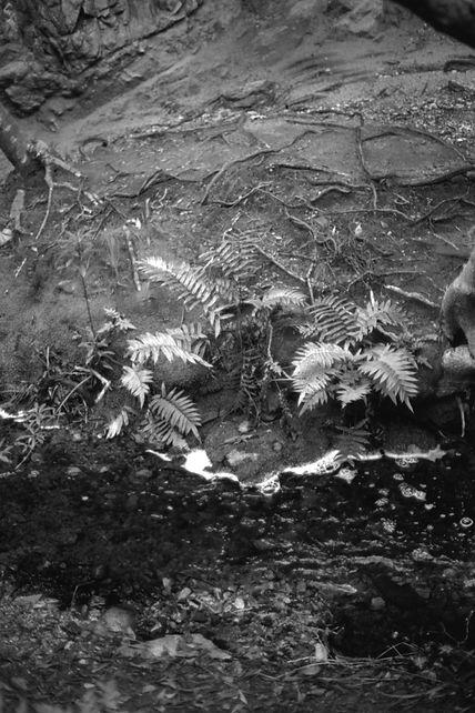 Rocklands-Waterfall_0024_pos.jpg