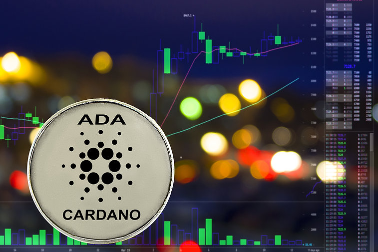 Coin cryptocurrency Cardano on night cit