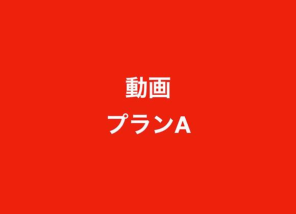 動画プランA(66,000円の半年契約)