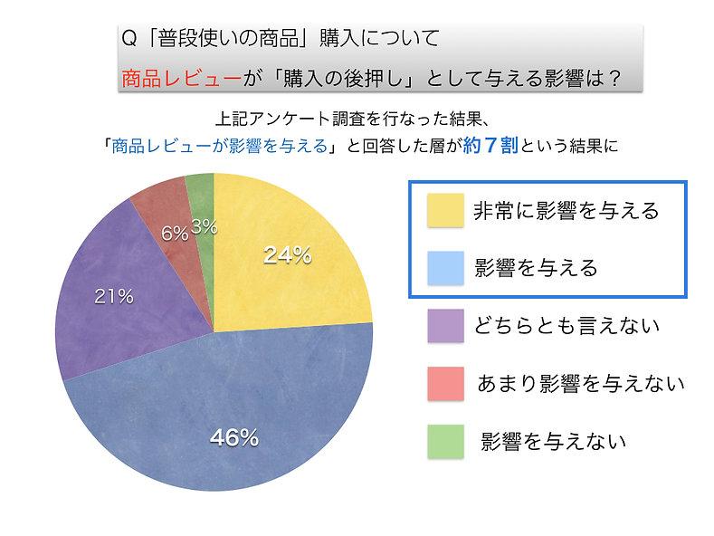 口コミグラフイメージ.001.jpeg