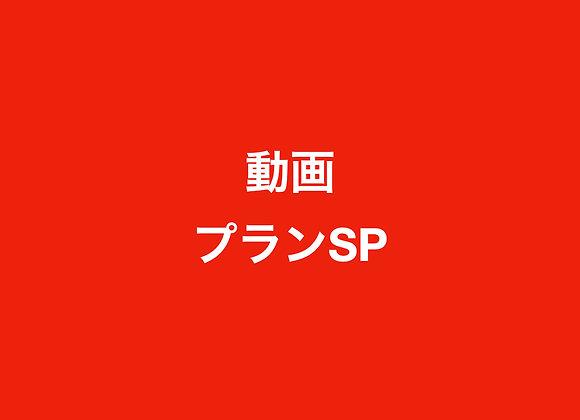 動画プランSP(165,000円の半年契約)