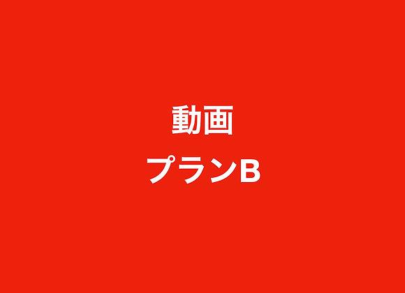 動画プランB(132,000円の半年契約)