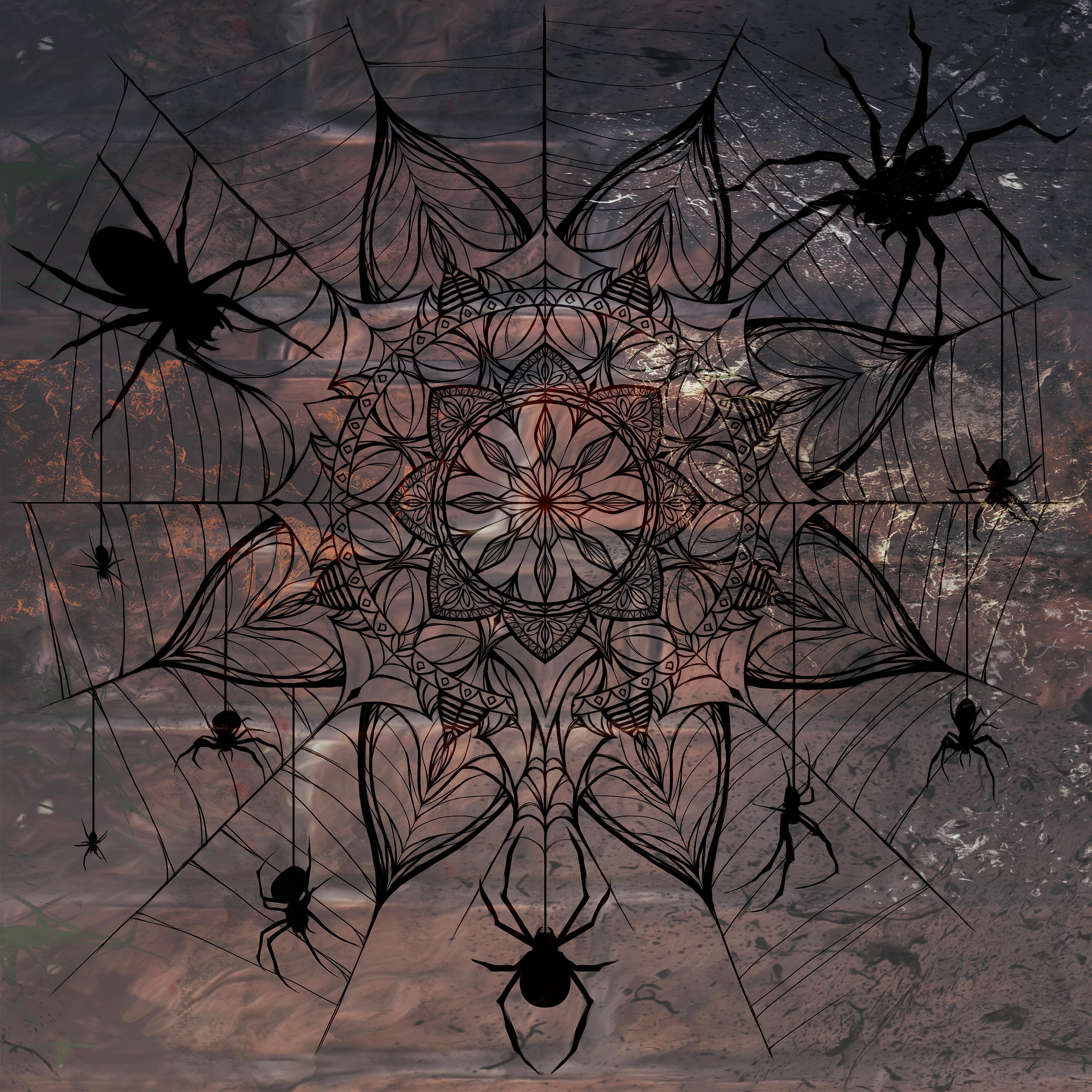 spidermandala