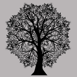 treemandala2