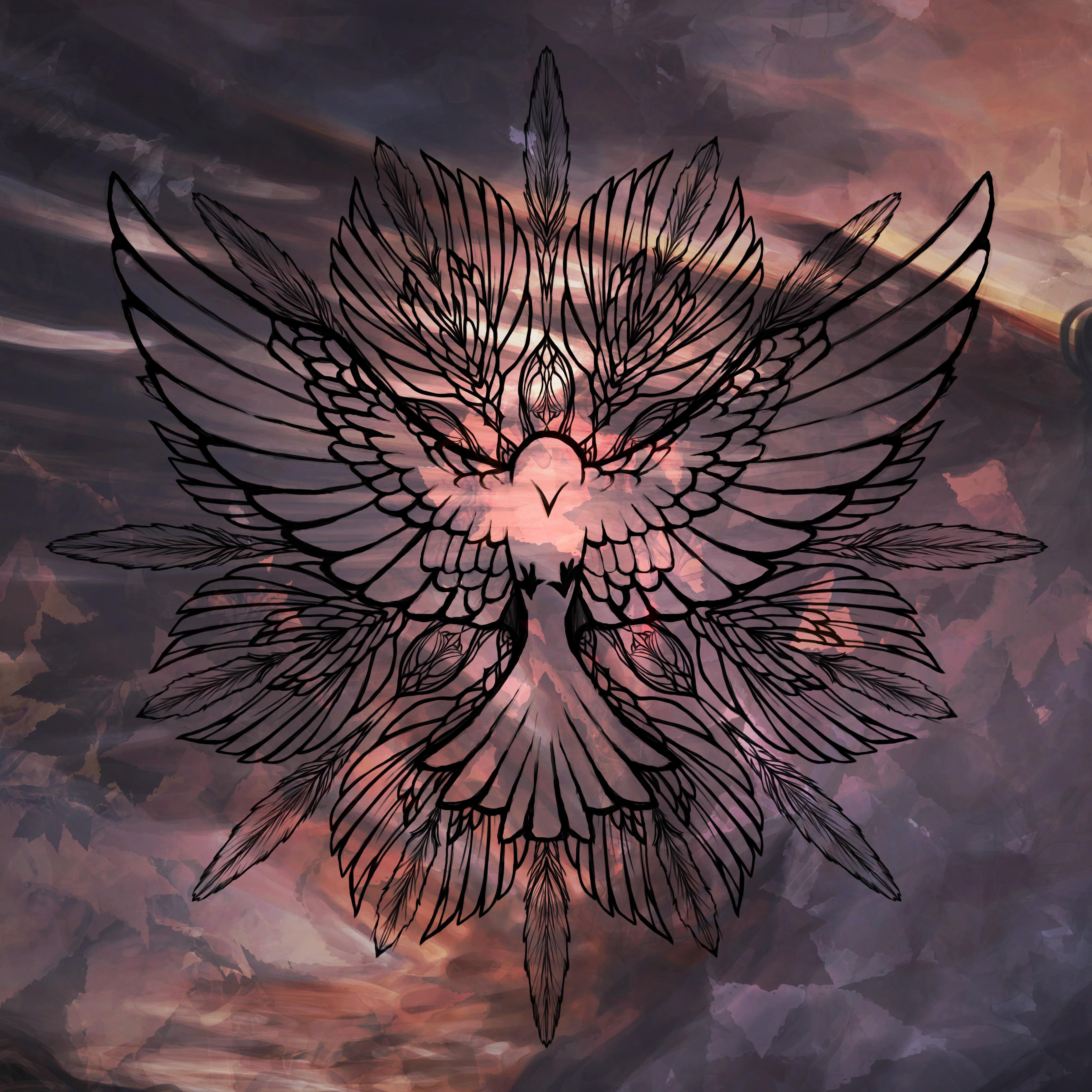 wingmandalacolor