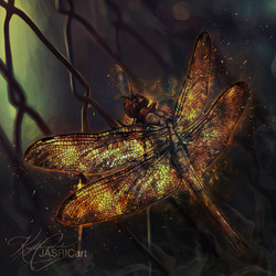 Fire Dragonfly