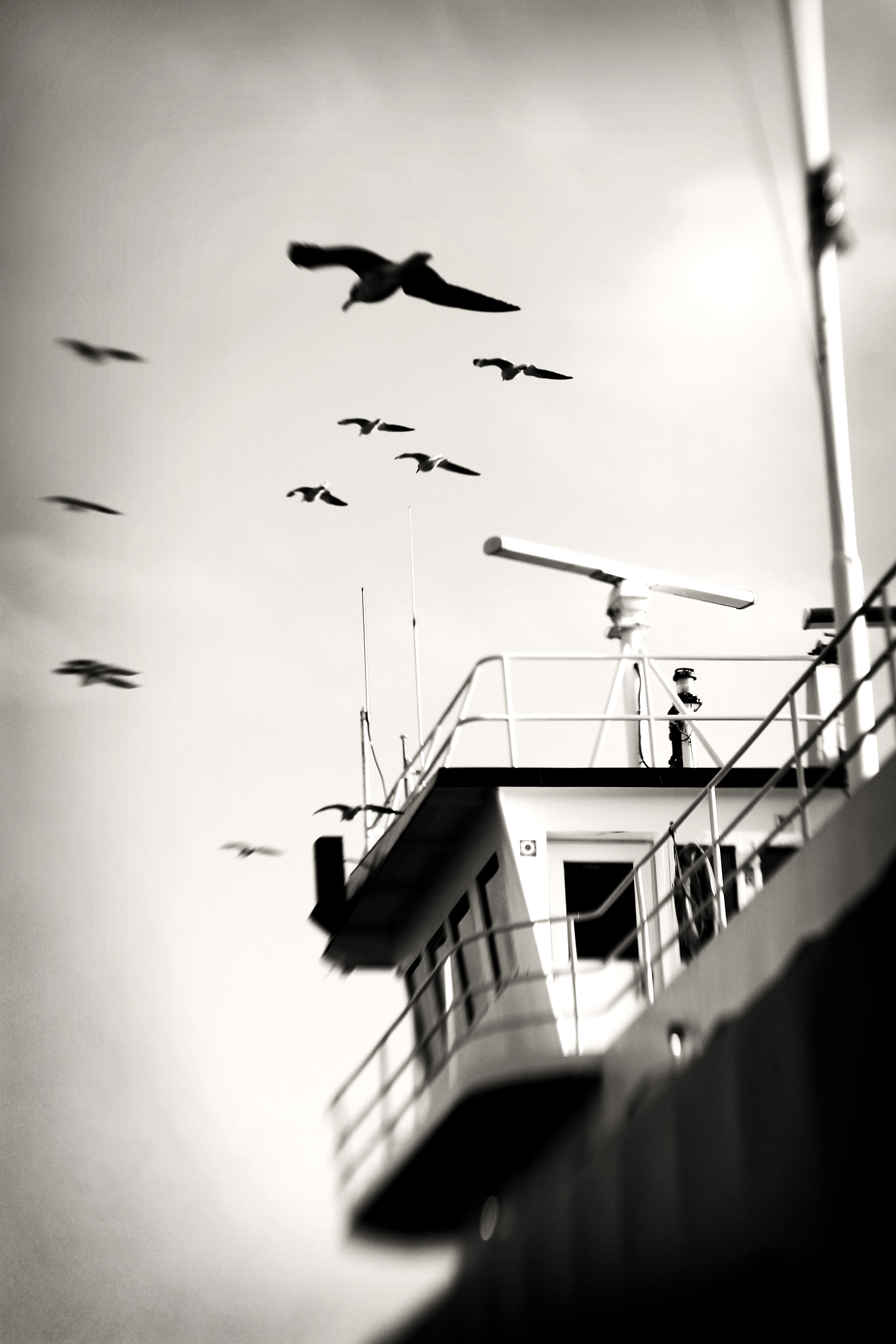 Ferry, 2012