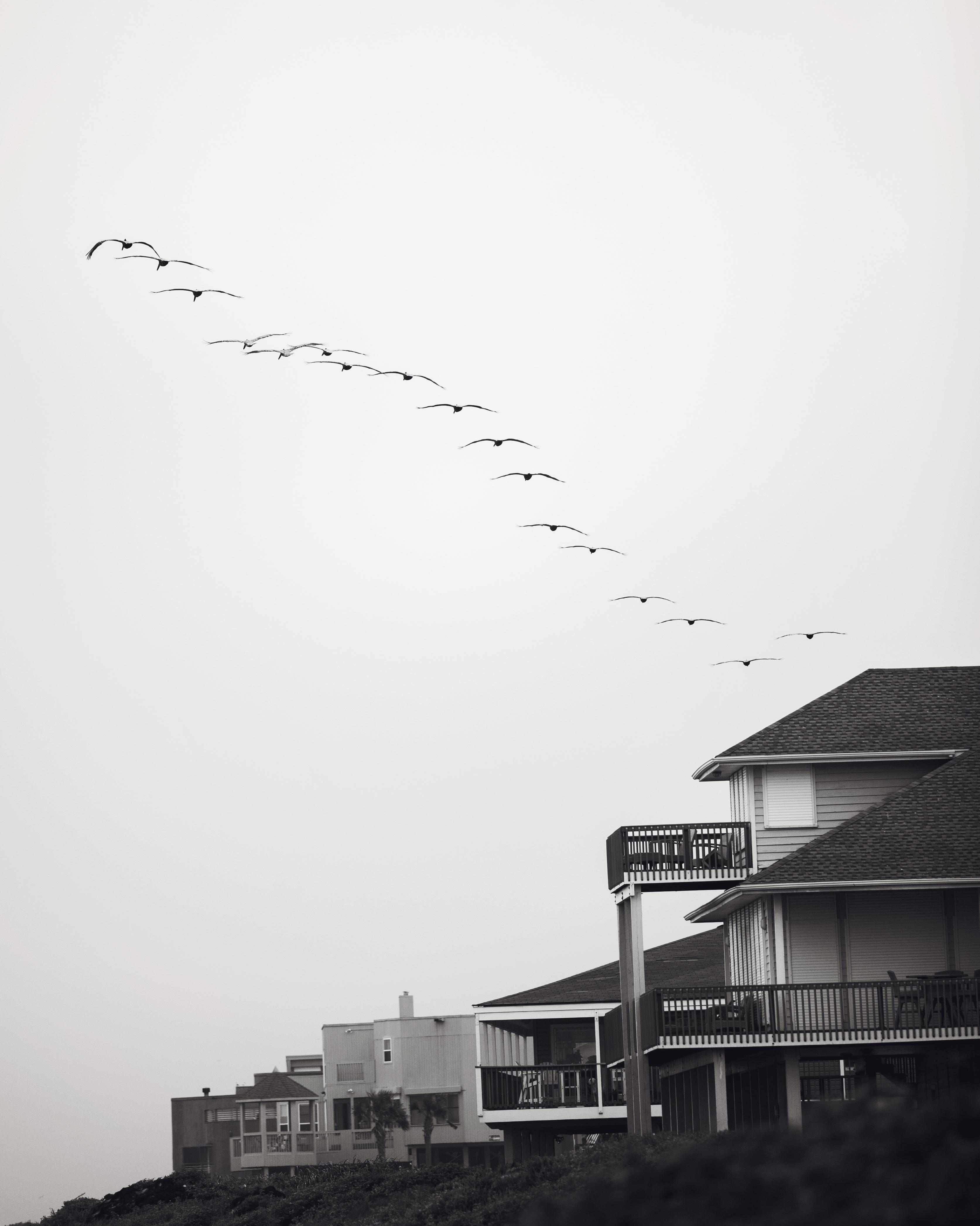 Flyover, 2016