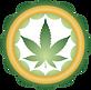 CES Logo ELEMENT.png